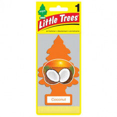Little Trees - Coconut - PACK 24