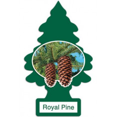 Little Trees - Royal Pine - PACK 24