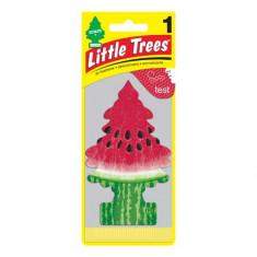Little Trees - Watermelon - PACK 24