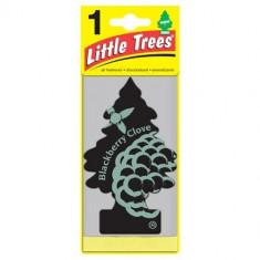 Little Trees - Blackberry Clove - PACK 24
