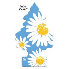 Little Trees - Daisy Fields - PACK 24