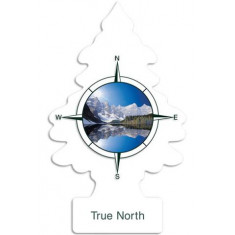 Little Trees - True North - PACK 24