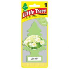 Little Trees - Jasmin - PACK 24