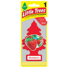 Little Trees - Strawberry - PACK 24