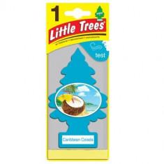 Little Trees - Caribbean Colada - PACK 24