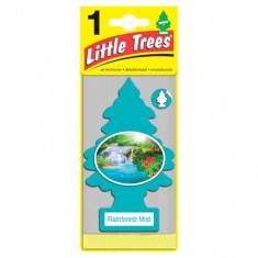 Little Trees - Rainforest Mist - PACK 24