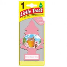 Little Trees - Cherry Blossom Honey - PACK 24