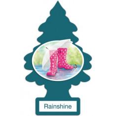 Little Trees - Rainshine - PACK 24