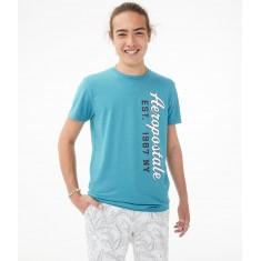 Camiseta Masc. Aeropostale - Tam: M,G e GG