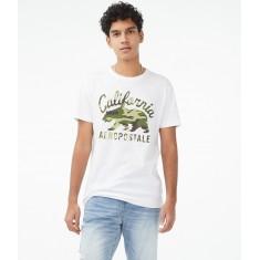 Camiseta Masc. Aeropostale - Tam: P, M, G e GG (Estilo 6316)