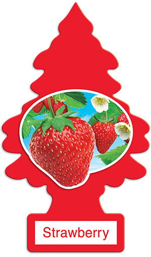 24x Strawberry
