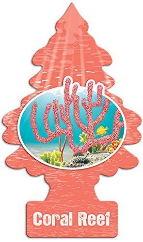 24x Coral Reef