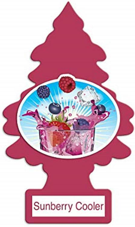 24x Sunberry Cooler